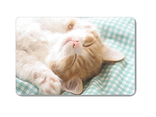 Gwein Cute Pet Cat Animal Doormat Entrance Mat Floor Mat Rug Indoor Outdoor Front Door Bathroom Mats Rubber Non Slip (23.6''x15.7'',L x W) by Gwein