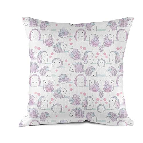 Shei Blance Square Throw Pillow Cases Cushion Covers Hedgehog Outline Sketch 1 Pillowcases for Sofa Bedroom 18