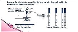 Greatfuns 25 HCG Pregnancy Test Strips