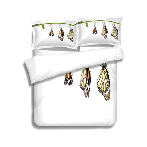 MTSJTliangwan Duvet Cover Set Transformation of Common Tiger Butterfly Emerging from Cocoon on 3 Piece Bedding Set with Pillow Shams, Queen/Full, Dark Orange White Teal Coral