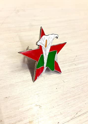 International Brigades Enamel Pin Badge Irish Republican Rebel 1916 Rising
