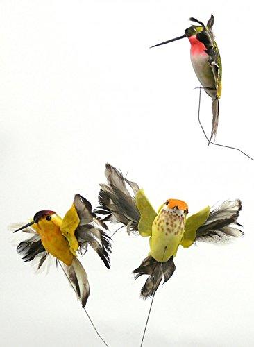 Serene Spaces Living Decorative Hummingbirds, Set of 12