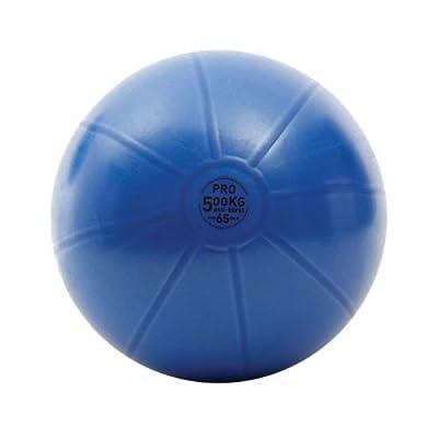 Swiss Ball 500kg 65cm Fitness-Mad
