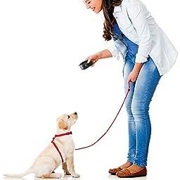 Emsco Group Pet Zoom Command Ultimate Dog Training System