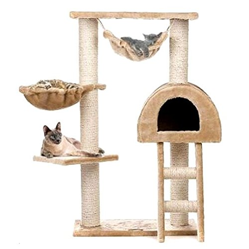 Cat Activity Tree with Ladder