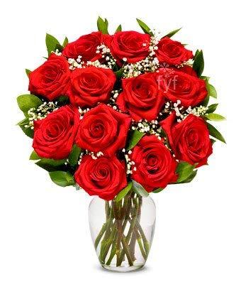 Flowers - One Dozen Premium Long Stemmed Red Roses (Free Vase Included)