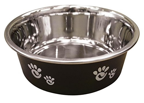 Ethical Pet Barcelona Matte and Stainless Steel Pet Dish, 16-Ounce, - Matte Licorice