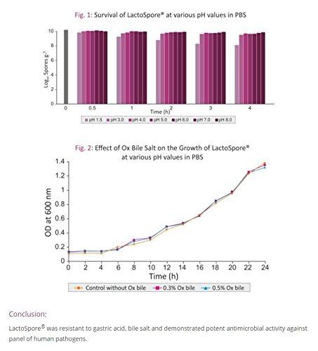 LactoSpore® (Bacillus Coagulans) Plus de LLS | Probióticos | 15 mil millones de UFC por gramo | 120 Cápsulas - Suministro para 4 meses | Incluye ...