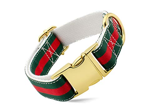 Designer Dog Collar and Leash Set, Adjustable with Gold Metal Hardware for Small Medium Large Dogs, 1'' Wide in Green, Red, White (Designer Dog Collar And Leash)