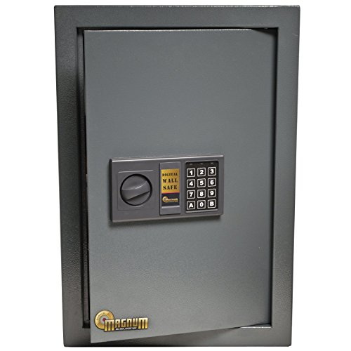 Amazoncom MAGNUM 52539 0585 Wall Safe SportsOutdoors