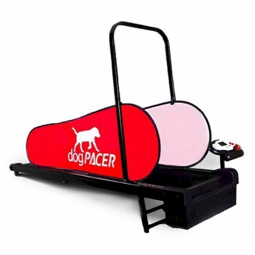 Pacer Treadmill (dogPACER LF 3.1 Dog Pacer)