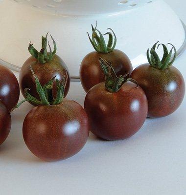 David's Garden Seeds Tomato Cherry Black D88A (Black) 50 Organic Seeds