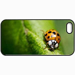 Personalized Protective Hardshell Back Hardcover For iPhone 5/5S, Ladybug Design In Black Case Color