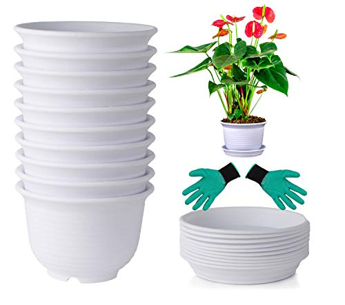 DeElf 10 Sets Plastic Flower Pots 6 inch Planters with Drainage and Saucers for Modern Indoor Plants, Orchid, Herbs, Succulents, Cactus, and Seeding Nursery, White Color, ()