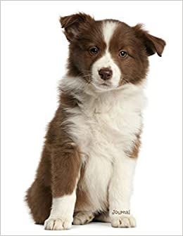 Journal Red Border Collie Puppy Dreamflight Publications