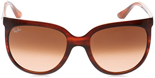 Havana pink Gradient Ray Brown Marron 4126 striped 1000 Sonnenbrille Cats rb ban OO4zqBw8