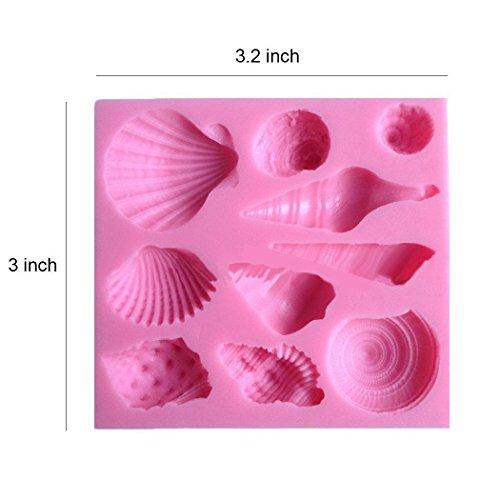 Buy small sea shell chocolate mold
