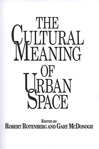 The Cultural Meaning of Urban Space (Contemporary Urban Studies)