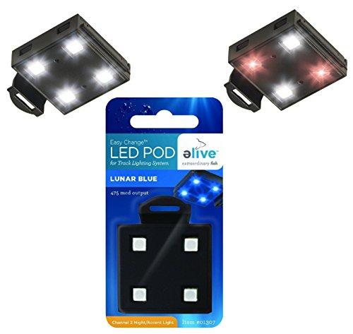 Elive Led Light Pods