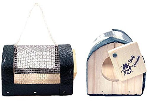 Cedar-Wood Bug House with Mesh Screen (Bug, Insect, Critter Collector) by Insect -