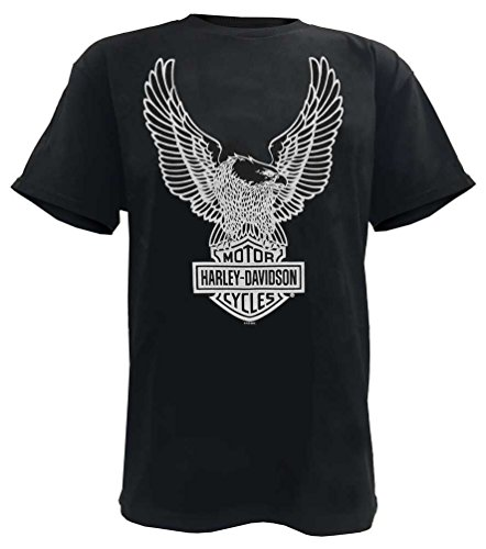 Harley-Davidson Mens T-Shirt Eagle Graphic Short Sleeve Black Tee 30296656 (2XL)