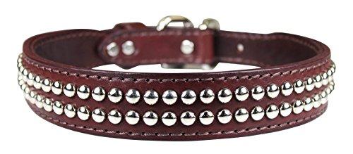 OmniPet Dome Studded Latigo Leather Dog Collar, Burgundy, 1.25