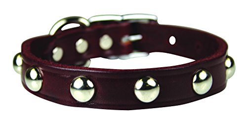 Studded Latigo Dog Collar - OmniPet Leather Brothers 102LS-BU18 3/4 x 18-Inch Regular Studded Latigo Leather Dog Collar, Large, Burgundy
