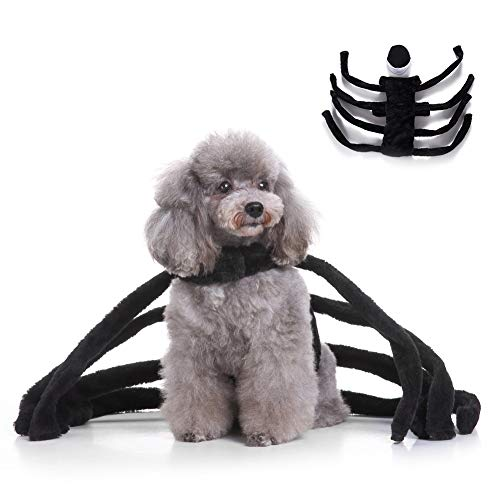 Albabara Pet Halloween Cosplay Costume Funny Cool Spider Harness Clothes Party Apparel Suit for Puppy Dog -