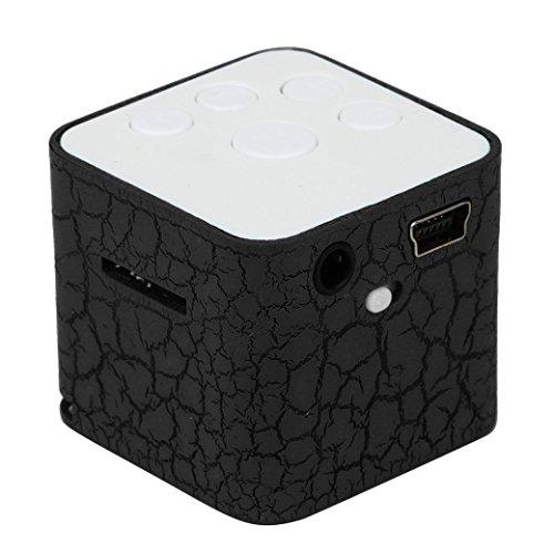 LtrottedJ Mini USB MP3 Player ,Support 32GB Micro SD TF Card Music Media (Black)