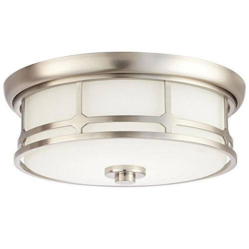 Brushed Nickel Decorator (Home Decorators Collection 14 in. Brushed Nickel LED Flushmount)