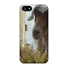 Defender Cases For Iphone 5/5s, Pygmy Goat At The Gate Pattern