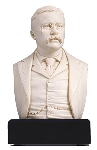 (Amazon Exclusive ! - Theodore Roosevelt Bust - Great Americans Collection)