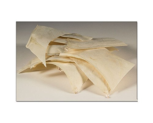 Leather Rawhide - Tandy Leather Rawhide Remnants 8 oz. 5046-09