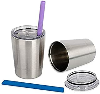 Housavvy Stainless Steel Sippy Cup with Lid and Straw, 8.5 OZ, Set of 2