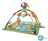 Fisher-price-baby-gyms
