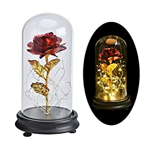 Smartcoco Beauty and The Beast LED Gold Foil Rose in a Glass Dome on a Wooden Base for Christmas Mother's Day Birthday Wedding Anniversary Valentine's Best Gift 3