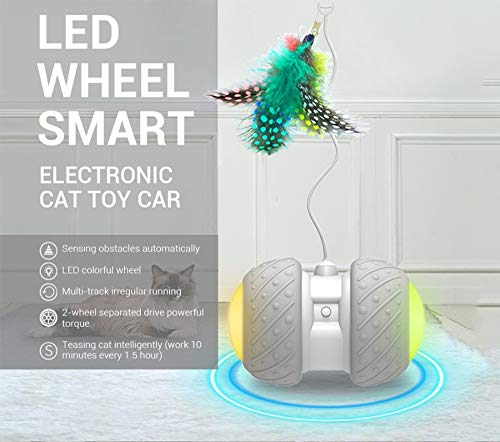 Interactive Robotic Cat Toys,Automatic Irregular USB Charging 360 Degree Self Rotating Ball,Automatic Feathers/Birds/Mouse Toys for Cats/Kitten,Build-in Spinning Led Light,Large Capacity Battery 6