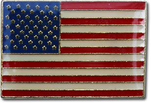 Charming USA   National Lapel Pin (Rectangular)