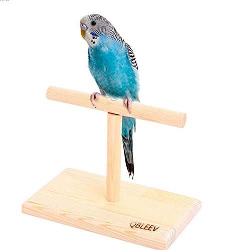 (QBLEEV Portable Parrot Training Perches Birdcage Decor Weight Scale Stand, Parakeets Playground Window T Perch Fits for Concures Cockatiel Finch Love Birds 7.8
