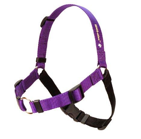 SENSE-ation No-Pull Dog Harness – Purple, My Pet Supplies