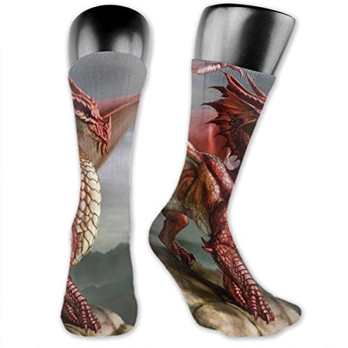(Men Novelty Red Fantasy Dragon- Classic Over The Calf Sock Athletic Team Stocking Unisex )