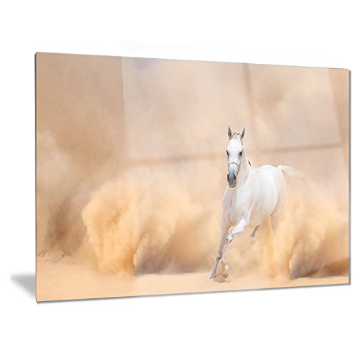 Designart Arabian Horse In Desert Storm - Photography Metal Wall Art - MT6469-28x12 by Design Art