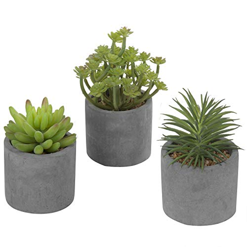 Planter Assortment - MyGift 5-Inch Faux Succulent Plants in Cement-Tone Clay Planters, Set of 3 (Assortment 4)