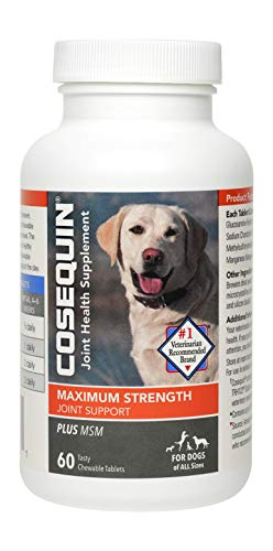 Cosequin Plus MSM Chewable Tablets, 60ct