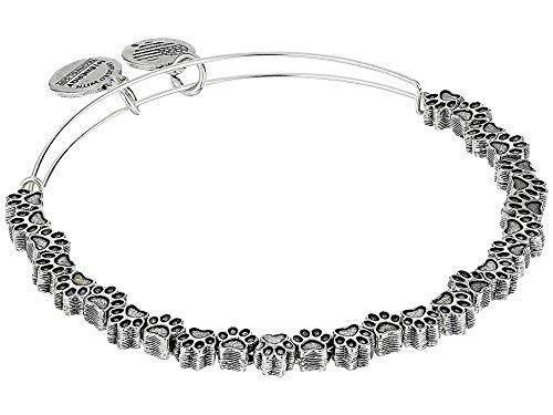 (Alex and Ani Women's Passw Print Beaded Bangle Bracelet, Rafaelian Silver)