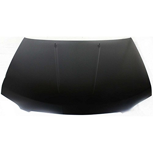 (Hood compatible with Nissan Sentra 04-06)