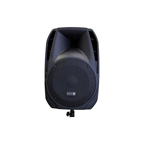 Edison Professional M-2000 Plus 15'' High Power PA Speaker by Edison Professional (Image #3)
