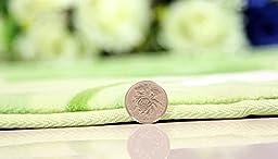Sytian® 50*80cm Super Soft Non-slip My Neighbor Totoro Shaggy Area Rugs Carpet Bedroom Rug Bath Mat Bathroom Rug Kitchen Floor Mat Shower Rug (19.68*31.49 Inch)