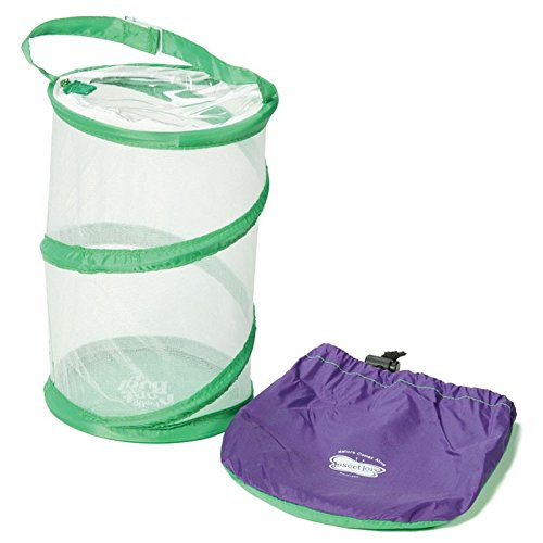 """Insect Lore Bug Carrying And Catching Bag - Mesh Bug Habitat Unfolds to 8"""" By 6"""" - Keep Your Critters Happy"""