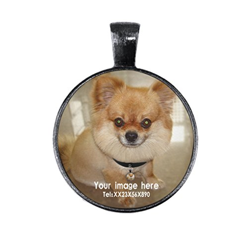 2d Pendant (Personalized Pet ID Tags Dogs Cats Charm Designer Safe Smart 3D Rhinestone Cover Engraved&Customzied Pet Name Image Address Phone Number&2D Barcode Identification Plate Tag Hanging Pendant)